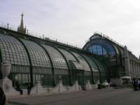 Hofburg w Wiedniu - palmiarnia