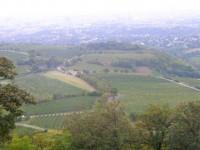 Kahlenberg - punkt widokowy